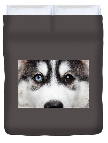 Closeup Siberian Husky Puppy Different Eyes Duvet Cover by Sergey Taran