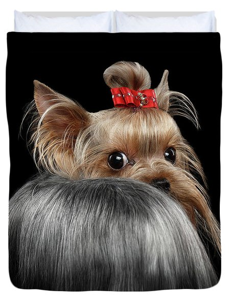 Closeup Yorkshire Terrier Dog, Long Groomed Hair Pity Looking Back Duvet Cover