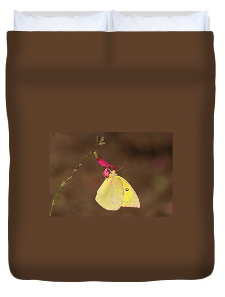 Clouded Sulphur Butterfly On Pink Wildflower Duvet Cover by Sheila Brown