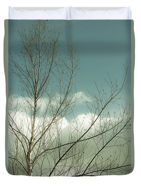 Duvet Cover featuring the photograph Cloudy Blue Sky Through Tree Top No 1 by Ben and Raisa Gertsberg