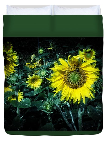 Cloudy Day In A Sunflower Field Duvet Cover by Greg Mimbs