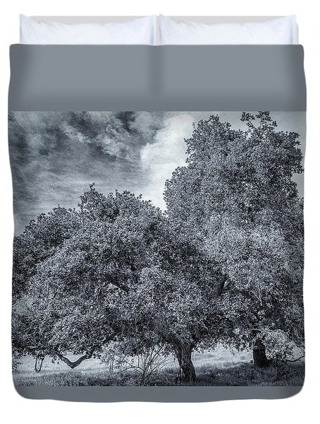 Coast Live Oak Monochrome Duvet Cover