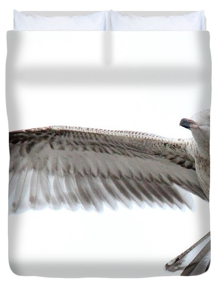 Coasting Duvet Cover by Ed Smith