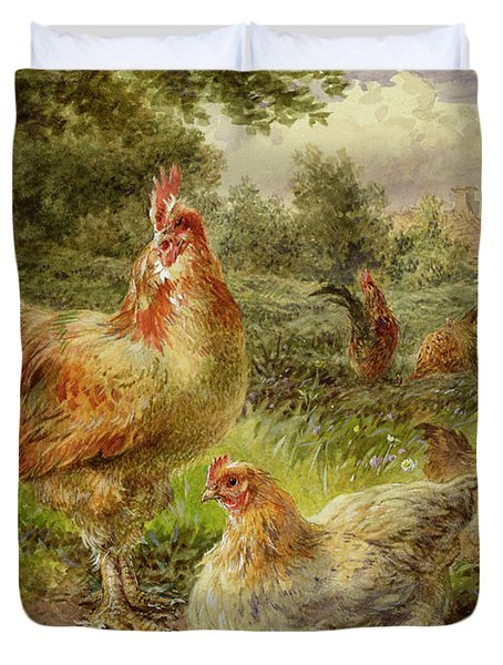 Cochin China Fowls Duvet Cover by George Hickin
