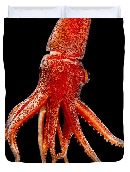 Cock-eyed Squid, Histoteuthis Duvet Cover