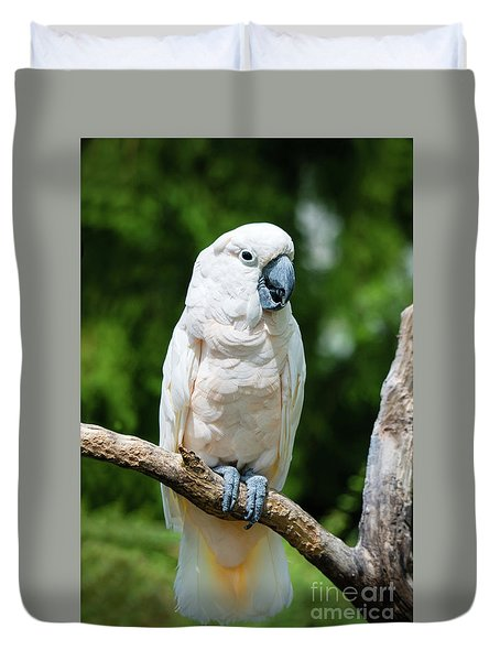Cockatoo Duvet Cover