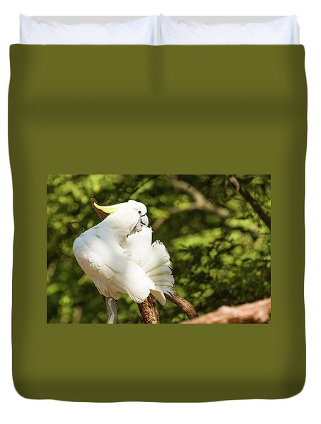 Cockatoo Preaning Duvet Cover