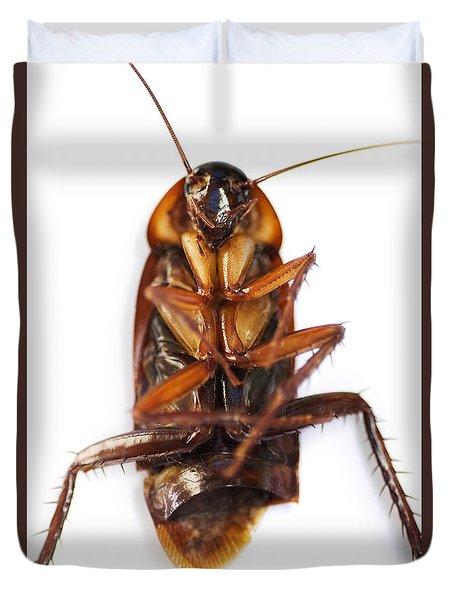 Cockroach Carcass Duvet Cover