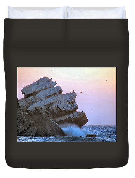 Cold Grey Dawn Duvet Cover by Dana Patterson