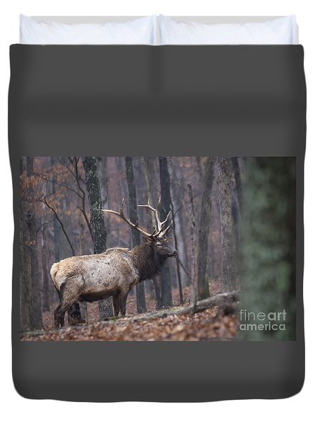 Duvet Cover featuring the photograph Chilly Misty Morning by Andrea Silies