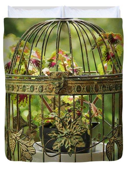 Coleus In Vintage Birdcage Duvet Cover