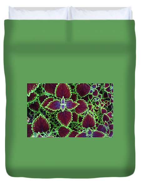 Coleus Leaves Duvet Cover