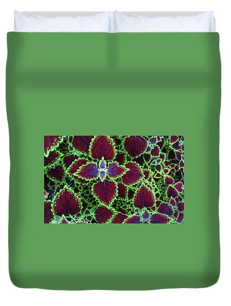 Coleus Leaves Duvet Cover