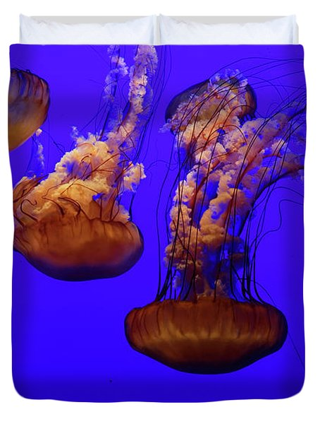 Collection Of Jellyfish Duvet Cover