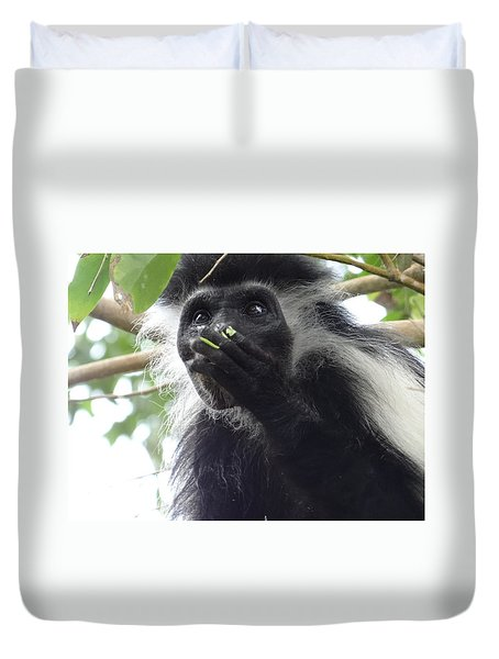 Colobus Monkey Eating Leaves In A Tree 2 Duvet Cover