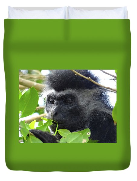Colobus Monkey Eating Leaves In A Tree Close Up Duvet Cover