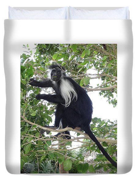 Colobus Monkey Eating Leaves In A Tree Duvet Cover
