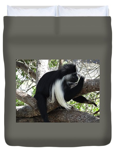 Colobus Monkey Resting In A Tree Duvet Cover