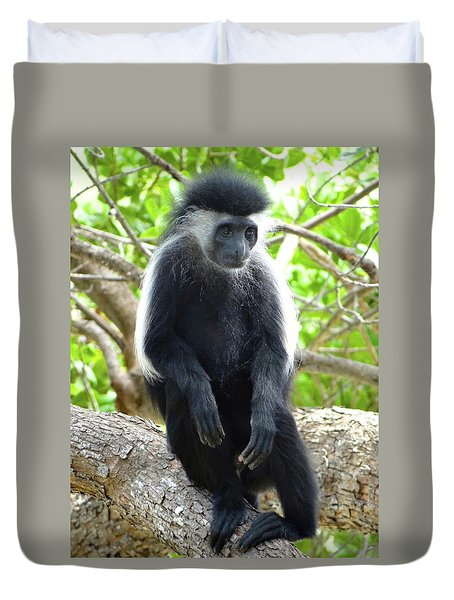 Colobus Monkey Sitting In A Tree 2 Duvet Cover