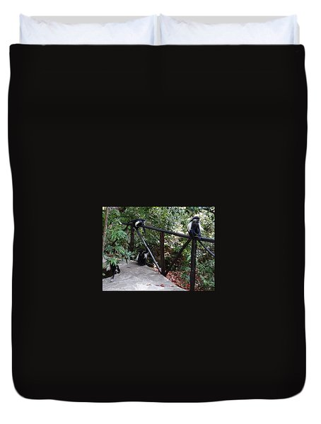 Colobus Monkeys At Sands Chale Island Duvet Cover