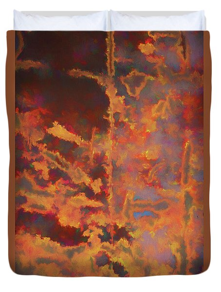 Duvet Cover featuring the photograph Color Abstraction Lxxi by David Gordon