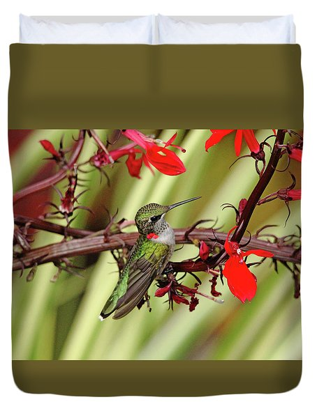 Color Coordinated Hummer Duvet Cover by Debbie Oppermann