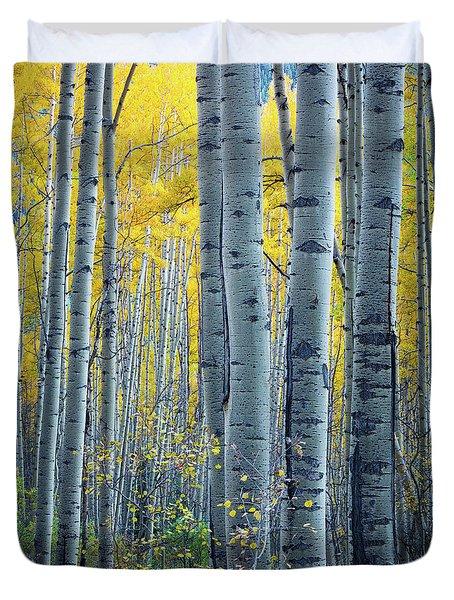Colorado Aspens Duvet Cover by Inge Johnsson
