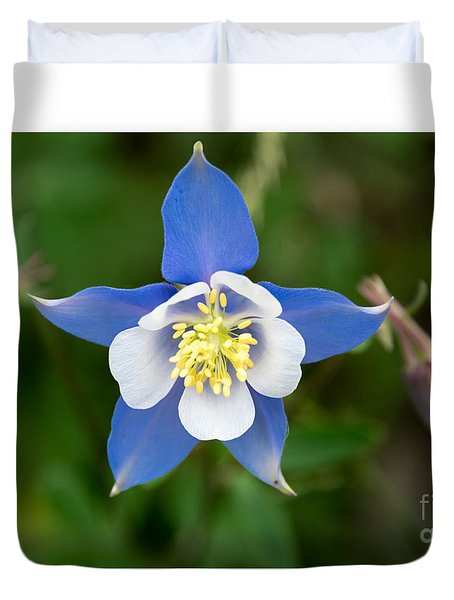 Colorado Blue Duvet Cover