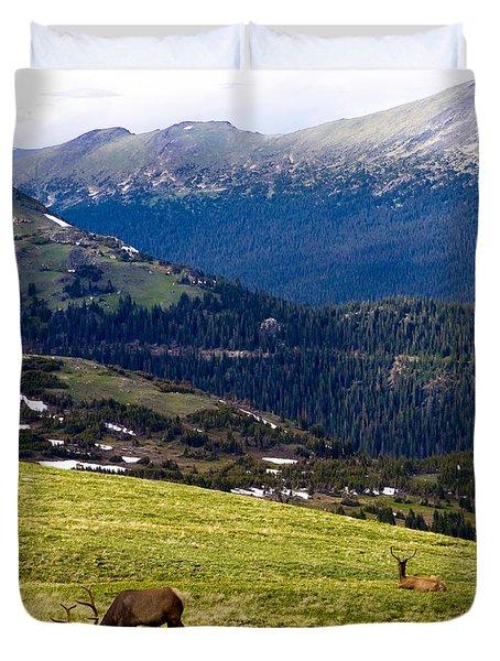 Colorado Elk Duvet Cover by Marilyn Hunt