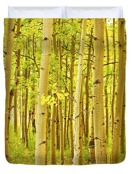 Colorado Fall Foliage Aspen Landscape Duvet Cover by James BO  Insogna