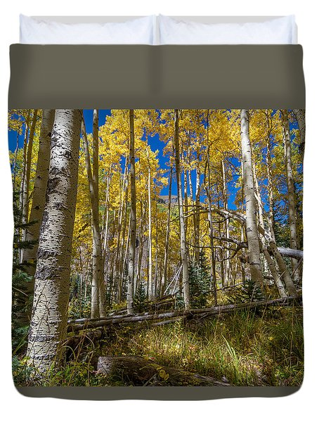 Colorado Fall Hike In The Aspens Duvet Cover