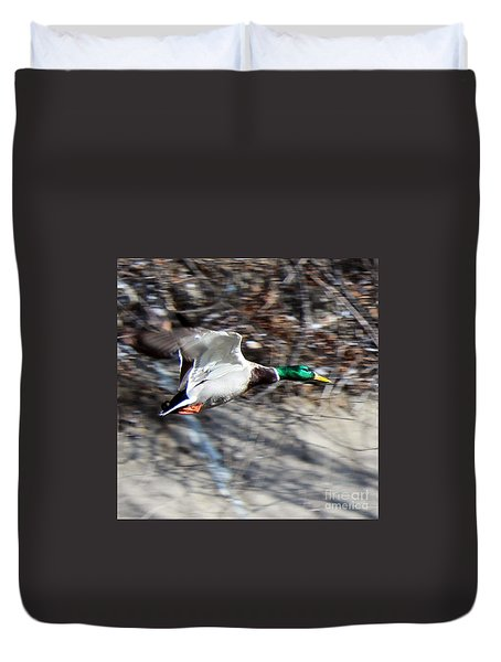 Colorado Mallard In Flight Duvet Cover
