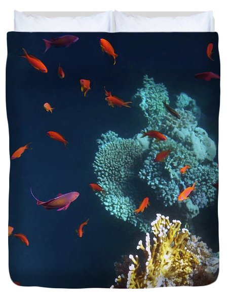 Colorful And Beautiful Sealife Duvet Cover