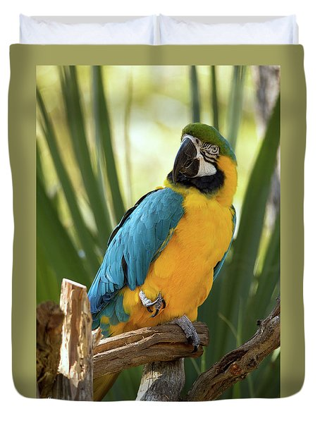 Colorful And Smart Duvet Cover