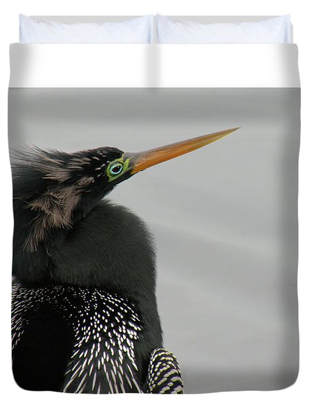 Colorful Anhinga Duvet Cover by Rosalie Scanlon