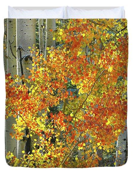 Colorful Aspen Along Million Dollar Highway Duvet Cover