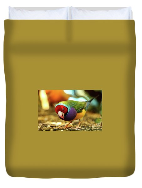 Colorful Bird Duvet Cover