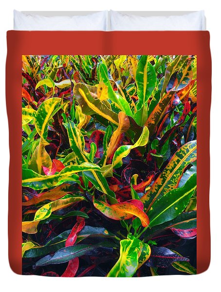 Colorful Crotons Duvet Cover by Kay Gilley