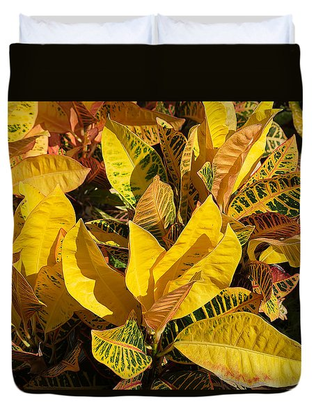 Colorful Crotons Duvet Cover by Kenneth Albin