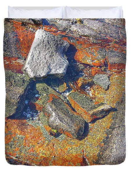 Colorful Earth History Duvet Cover by Heiko Koehrer-Wagner