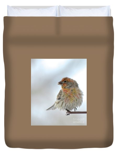Colorful Finch Eating Breakfast Duvet Cover