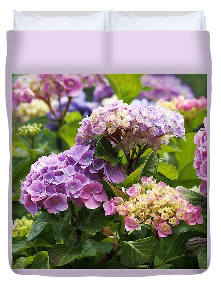 Colorful Hydrangea Blossoms Duvet Cover by Rona Black