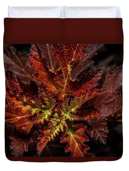 Duvet Cover featuring the photograph Colorful Leaves by Paul Freidlund