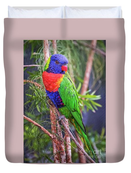 Colorful Parakeet Duvet Cover by Stephanie Hayes