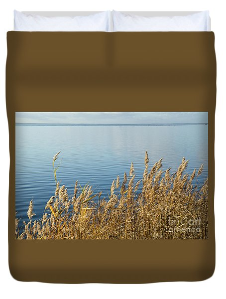 Colorful Reeds Duvet Cover
