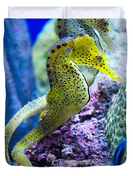 Colorful Seahorses Duvet Cover