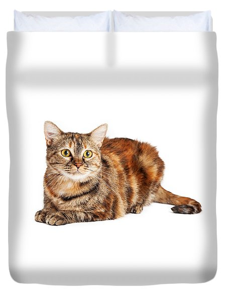 Colorful Tortie Cat Laying Looking Forward Duvet Cover