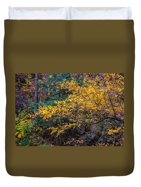 Colorful Trees Along The Creek Bank Duvet Cover
