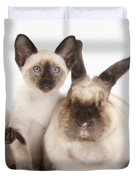 Colorpoint Rabbit And Siamese Kitten Duvet Cover by Mark Taylor