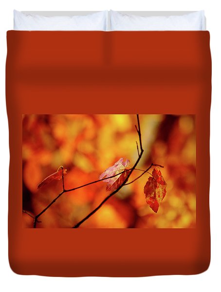 Duvet Cover featuring the photograph Colors by Robert Geary